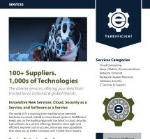 tei-services-insert-web-thumb