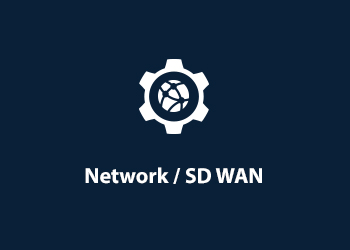 Master Agent - Network and SD WAN Consulting